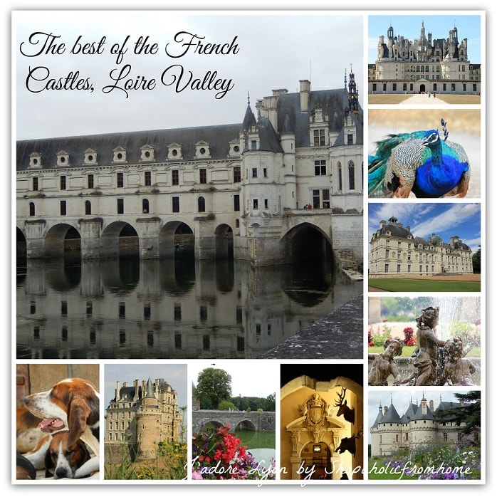 Top 14 French Castles of Loire Valley